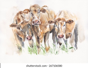 Cows cattle friends watercolor illustration handmade isolated on white background
