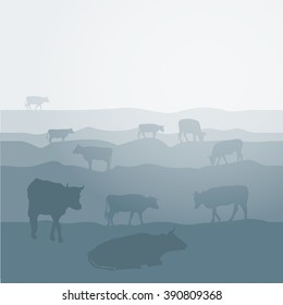Cows graze in the field landscape sky, grass, pasture. Blue, gray silhouette background.