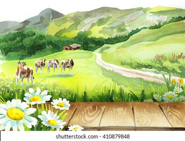Cows in a meadow and a board