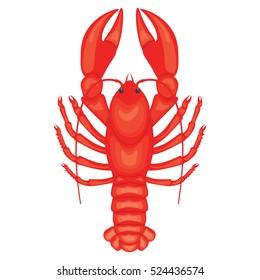 Crayfish illustration isolated on white background