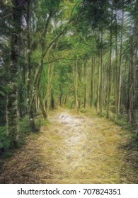 Crayon Drawing; Trail at the World Heritage Forest Kumano Kodo, Wakayama Prefecture