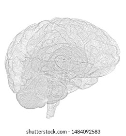 Creative concept of the human brain. Pencil drawing. 3D illustration