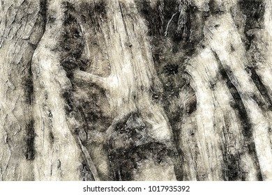 Creative Illustration - Abstract Texture - Wood Detail - Rough Pencil Sketch
