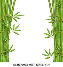 Creative illustration of chinese bamboo grass tree. Tropical asian plant art design. Abstract concept graphic banner, brochure, cover, booklet, print, flyer, book, blank, a4 element