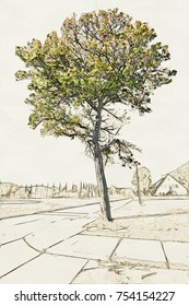 Creative Illustration of an Old Tree in front of wide field.