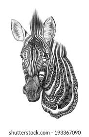 Creative zebra pencil sketch