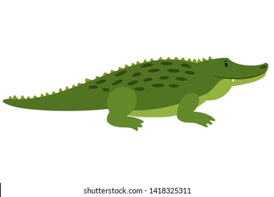 Crocodile. isolated cartoon alligator, african gator on white background