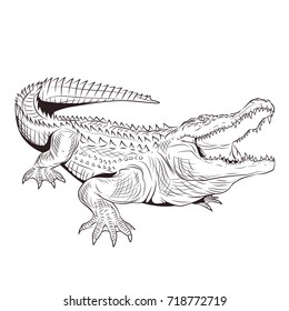 crocodile with open mouth adult coloring page