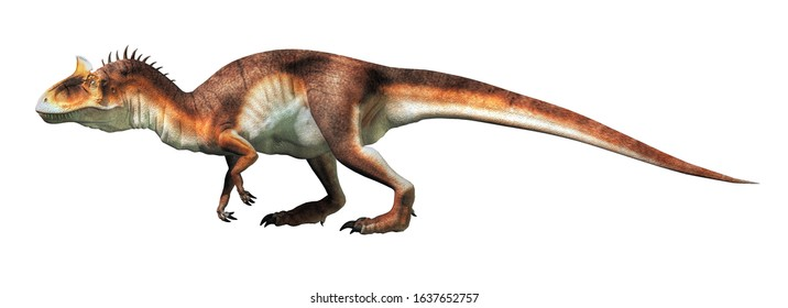 Cryolophosaurus was a carnivorous theropod dinosaur, known for a distinctive crest, it lived during the Jurassic in Antarctica. On a white background. 3D Rendering.