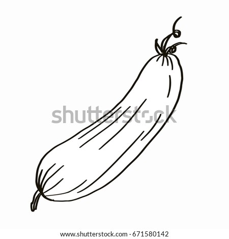 Cucumber Icon Coloring Stock Illustration Royalty Free Stock