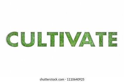 Cultivate Grow Expand Grass Growth Word 3d Render Illustration