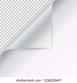 Curled white paper corner with shadow on blank sheet of paper. Close-up isolated on checkered background. Paper sticker, 3D illustration