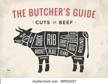Cut of beef set. Poster Butcher diagram and scheme - Cow. Vintage typographic hand-drawn. Illustration