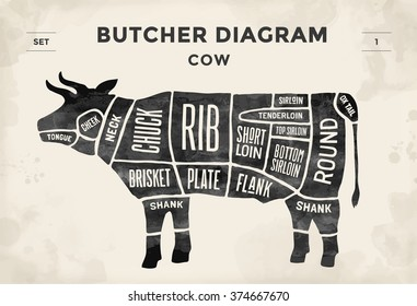 Cut of meat set. Poster Butcher diagram and scheme - Cow. Vintage typographic hand-drawn. Illustration
