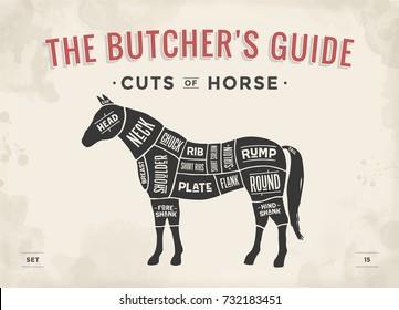 Cut of meat set. Poster Butcher diagram, scheme - Horse. Vintage typographic hand-drawn horse silhouette for butcher shop, restaurant menu, graphic design. Meat theme. Illustration