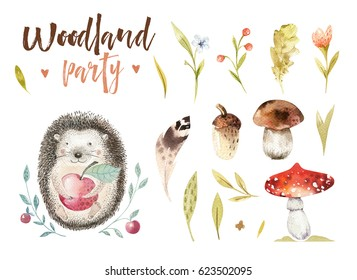 Cute baby animal nursery isolated illustration for children. Watercolor boho forest drawing, watercolour, hedgehog image Perfect for nursery posters, postcard