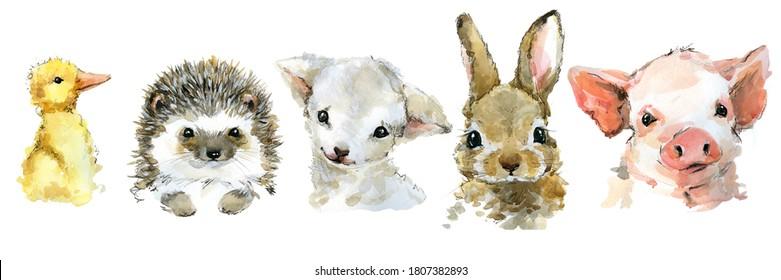 cute baby animals watercolor set