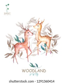 Cute baby deers animal isolated illustration for children. Bohemian watercolor boho forest deer family watercolor drawing Perfect for nursery posters. Birthday invite