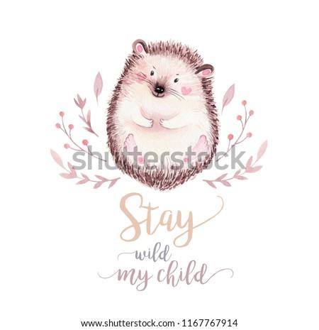 Cute Baby Hedgehog Animal Nursery Isolated Stock Illustration