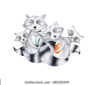 Cute baby raccon nursery animal isolated illustration for children. Bohemian watercolor boho forest raccons family drawing, watercolour image. Perfect for nursery posters, patterns. Birthday invite.