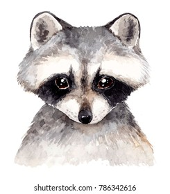 Cute baby raccoon. Watercolor illustration . Hand drawn forest animal portrait.