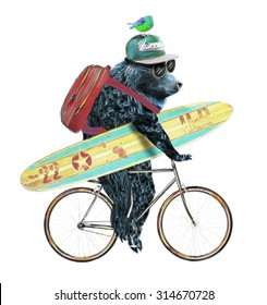 Cute bear with a bicycle illustration.T shirt graphics.Animal cartoon characters.