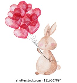 Cute bunny with balloons. Hand drawn pencil drawing