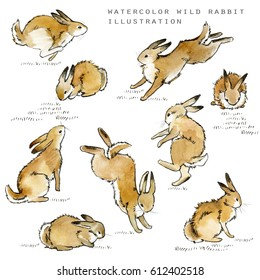 cute bunny set. rabbit watercolor illustration.