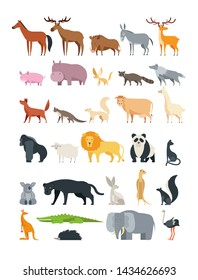 Cute cartoon animals. Forest, savannah and farm animal collection isolated on white. Illustration of koala and hippo, kangaroo and raccoon
