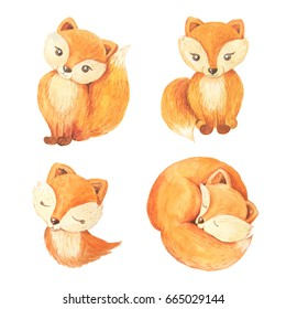 Cute cartoon watercolor forest animal. Hand painted lovely baby foxes illustrations perfect for print and card making. Woodland wild brown bear