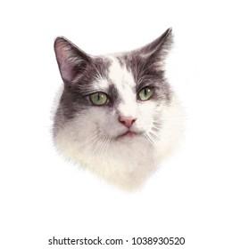 Cute cat isolated on white background. Drawing of a cat head with green eyes executed in pastel and pencil. Good for print T-shirt, card, cover, banner. Hand painted cat illustration. Design template