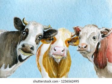 Cute cows watercolor illustration