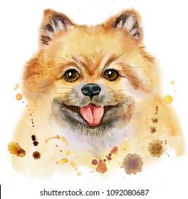 Cute Dog. Dog T-shirt graphics. watercolor pomeranian spitz illustration
