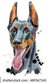 Cute Dog. Dog T-shirt graphics. watercolor husky illustration