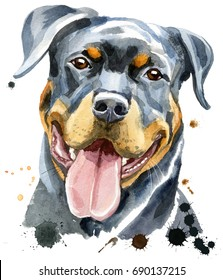 Cute Dog. Dog T-shirt graphics. watercolor rottweiler