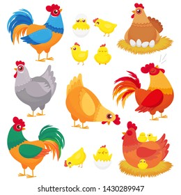Cute domestic chicken. Farm breeding hen, poultry rooster and chickens with chick. Hens, domestic roosters and broilers chicks. Easter birds in nest cartoon  isolated icons set