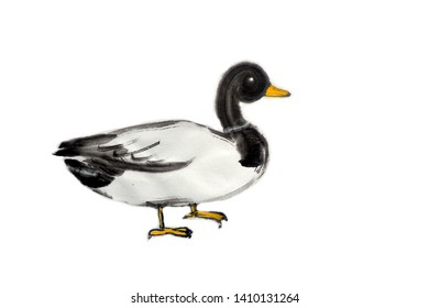 Cute Duck.Hand painted with black ink in Chinese brush style on white background.