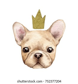 Cute french bulldog with crown.