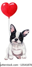 Cute french bulldog puppy with red balloon. Hand drawn watercolor