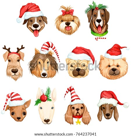 cute funny christmas dog in caps and hats with christmas decorations watercolor illustration