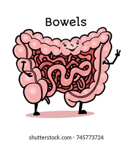 Cute and funny human guts, bowels, intestines character, cartoon illustration isolated on white background. Healthy smiling guts, bowels, intestines character with arms and legs
