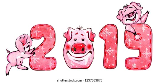 Cute funny pigs with numbers. Greeting watercolor illustration.  Cartoon style. Isolated on white.