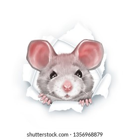 Cute gray cartoon rat, paper breakthrough, digital painting