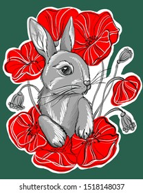 Cute gray rabbit with red poppies. Hare in flowers. Stylized red flowers. Hand-drawn rabbit.
