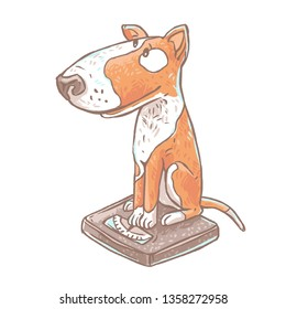 Cute hand drawn dog bull terrier siting on weigh scales. Сoncept health and pet obesity. Funny color cartoon illustration