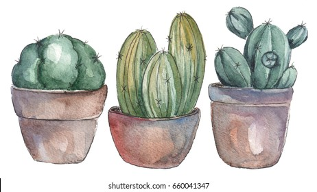 Cute home cactus plants in pots. Watercolor illustration isolated on a white background