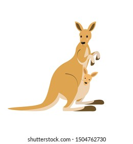 Cute kangaroo on white background.