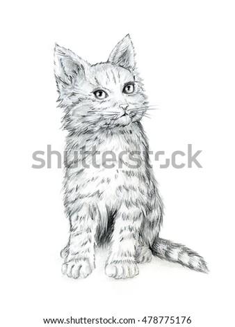 cute kitten hand drawing stock illustration 478775176 shutterstock