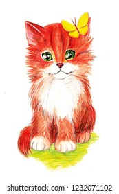 Cute kitty illustration. Orange striped cat with a white chest. Stylized cat for children and children's products.