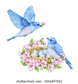 Cute little blue bird with nest and blue eggs. Watercolor illustration. Cute animals and birds. Spring symbol. Happy Easter. Blue luck bird